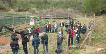 Roda de premsa de presentació del projecte a la parcel·la experimental de la finca de Can Grau